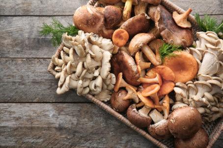 mushrooms in a tray